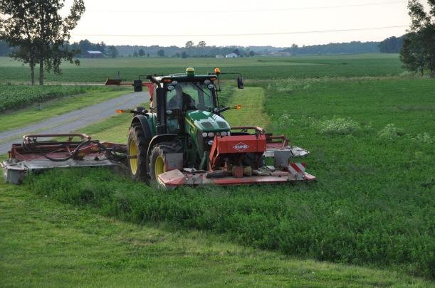 Farm Pictures 06 18 13 035 - Alfalfa