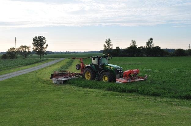 Farm Pictures 06 18 13 037 - Alfalfa