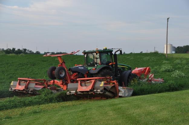Farm Pictures 06 18 13 041 - Alfalfa