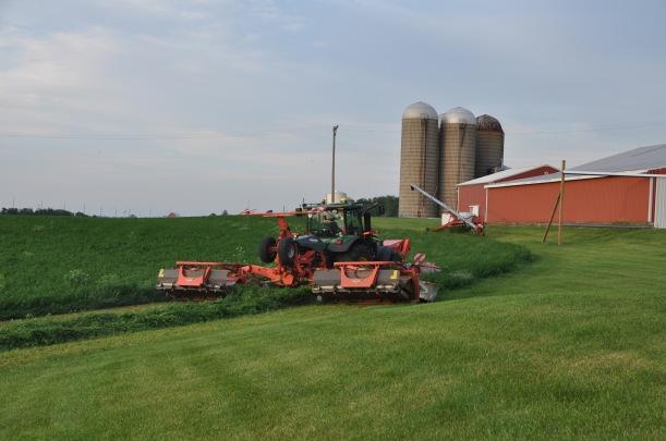 Farm Pictures 06 18 13 043 - Alfalfa