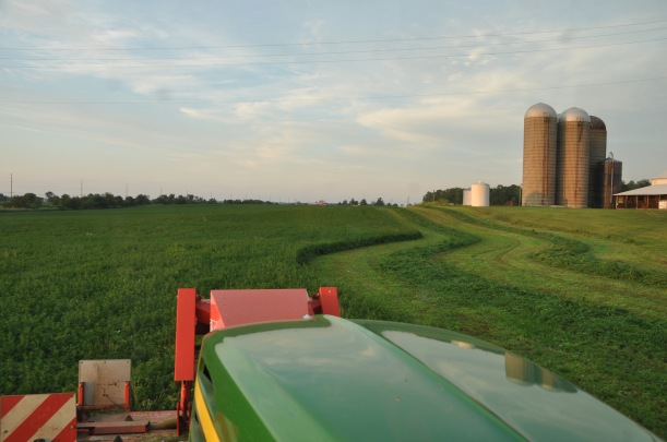 Farm Pictures 06 18 13 072 - Alfalfa