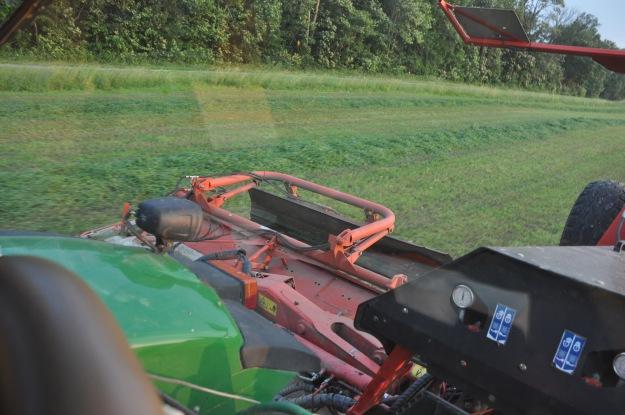 Farm Pictures 06 18 13 074 - Alfalfa