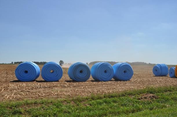 Harvest 2013 - 09 04 13 001