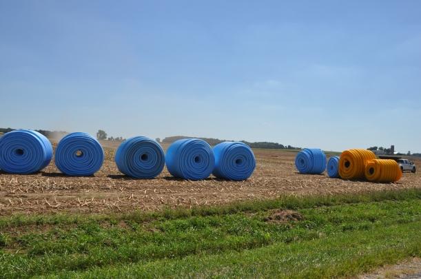 Harvest 2013 - 09 04 13 003