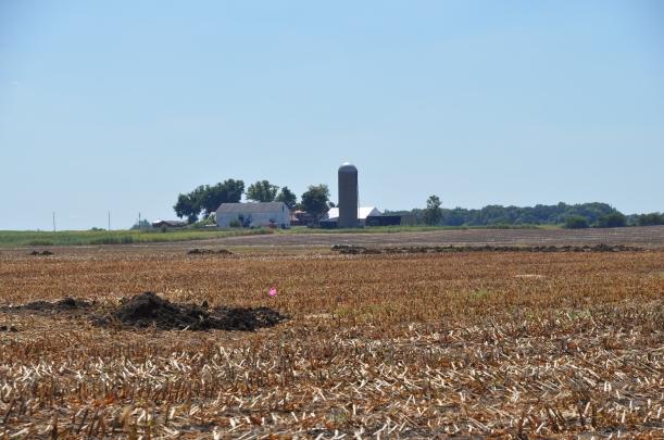 Harvest 2013 - 09 04 13 007