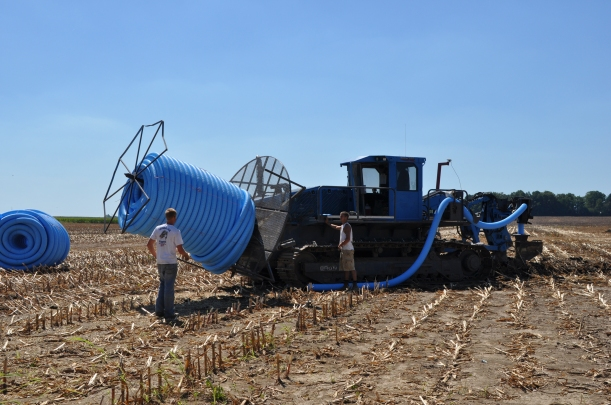Harvest 2013 - 09 04 13 018