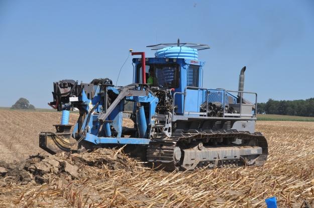 Harvest 2013 - 09 04 13 021