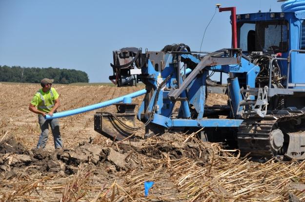 Harvest 2013 - 09 04 13 025