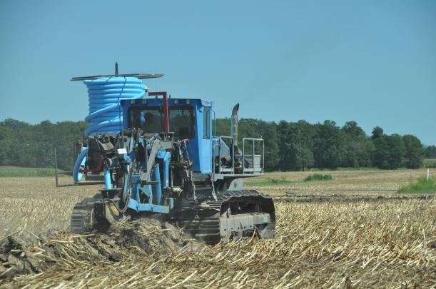 Harvest 2013 - 09 04 13 034