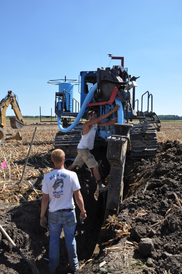 Harvest 2013 - 09 04 13 054