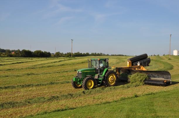 Harvest 2013 192