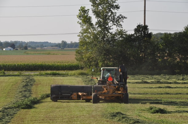 Harvest 2013 199