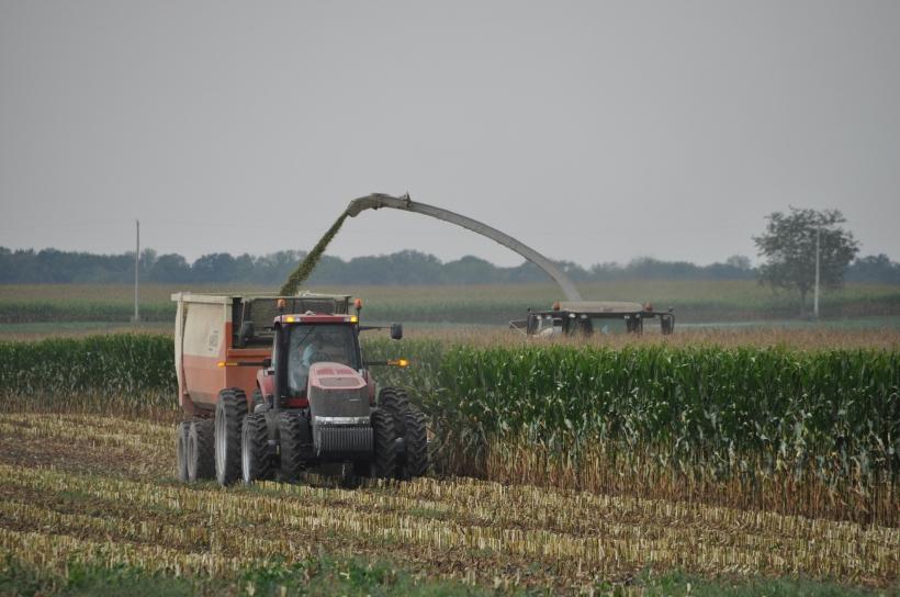 Harvest 2013 223
