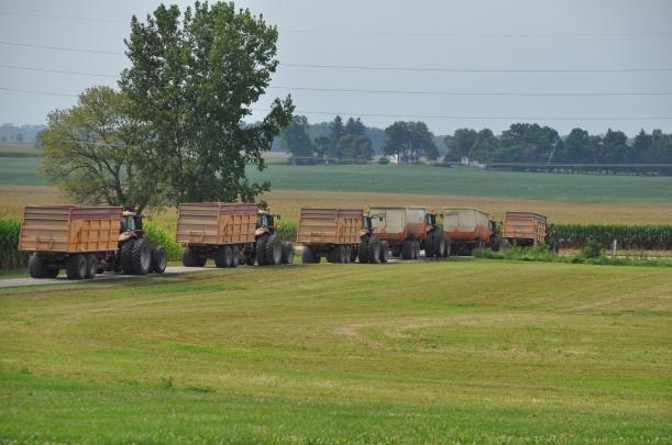 Harvest 2013 272