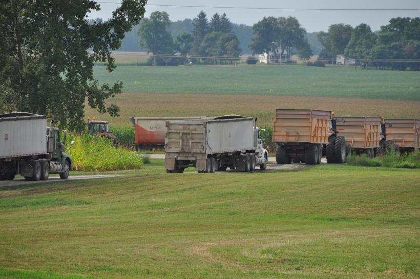 Harvest 2013 278