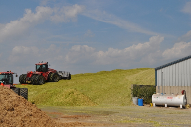Silage Pile and Manure Spreading 09 07 13 011