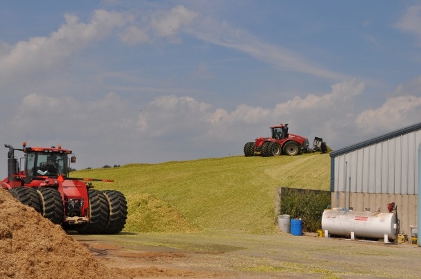 Silage Pile and Manure Spreading 09 07 13 012