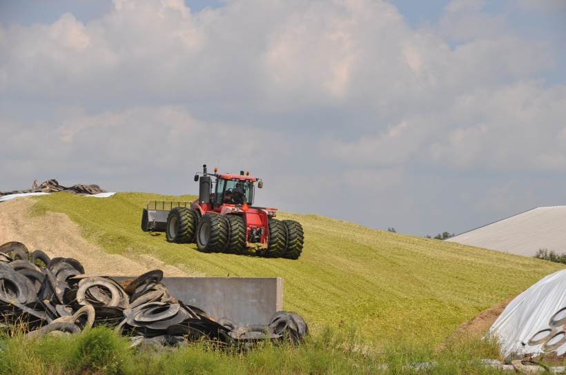 Silage Pile and Manure Spreading 09 07 13 013